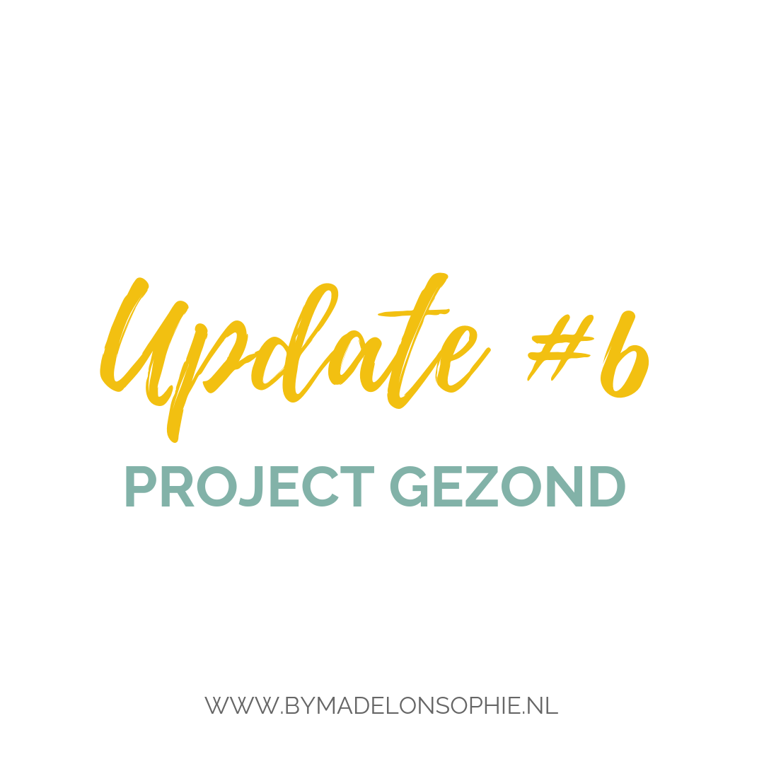project gezond update blog
